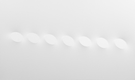 7 ovali bianchi