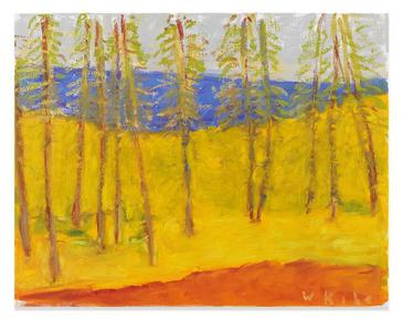 Pinewoods Near the Sea