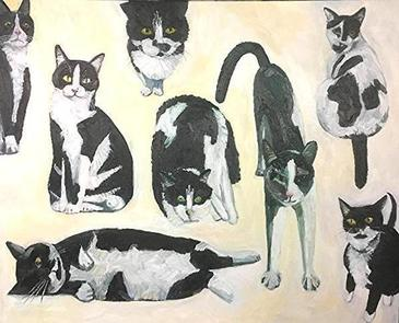 Cow Cats