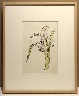 Still-Life (Flower)