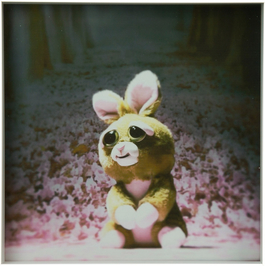 Serenity Inducing Bunny