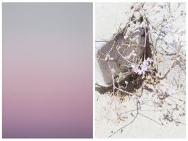 Pastel Sky & Wild Flowers Diptych