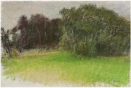 Moody American Landscape