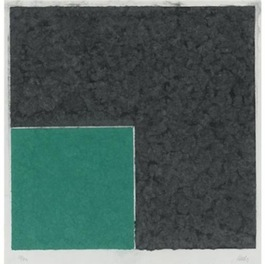 COLORED PAPER IMAGE XVIII (GREEN SQUARE WITH DARK GRAY)