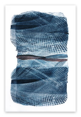 Blue Netting