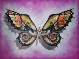 Elephutterfly