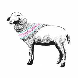 Pure Wool (Turquoise & Magenta)