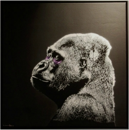 Portret 2 (Gorilla)