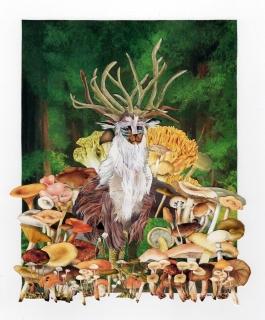 Shishi Gami The Forest Spirit