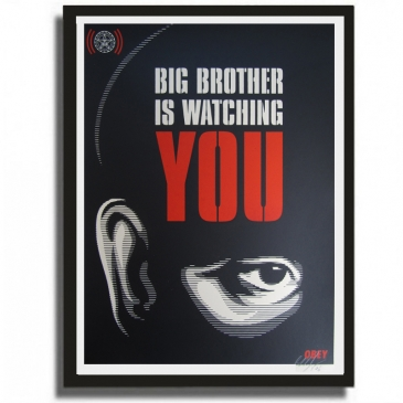 BIG BROTHER IS WATCHING YOU (2006)