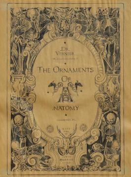 The Ornaments of Anatomy