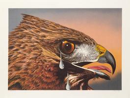 Special Bird II