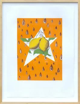 The Lemon Twig