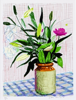 iPad drawing lilies
