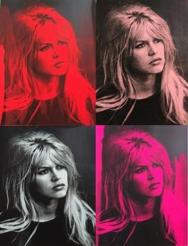 Brigitte Bardot Portfolio (4)