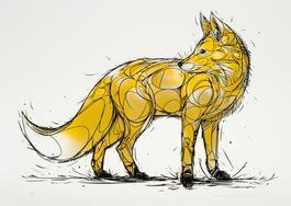 Fox x2