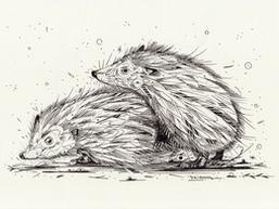 Hedgehog loving