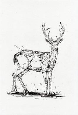Deer Check It