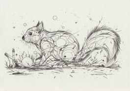 Squirrel catapult