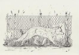 Fox fence