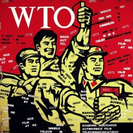 Great Criticism WTO