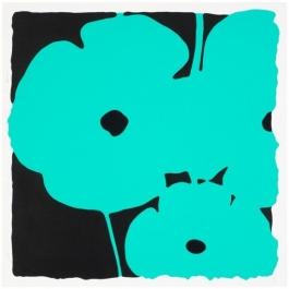 Poppies - Aqua