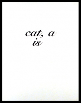 CAT A IS