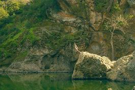 Malibu Rock Pond