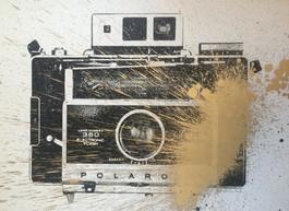 Warhol Polaroid