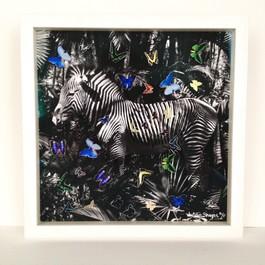 Zebra (Triptych)