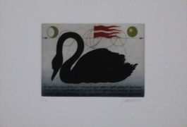 Schwarzer Schwan / Black Swan
