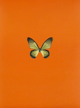 Six Butterflies I