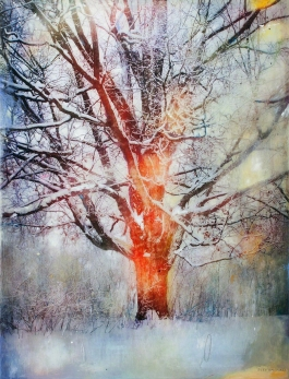 Winter Tree AP
