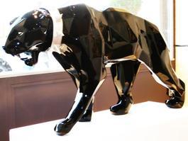 Wld neck panther, black