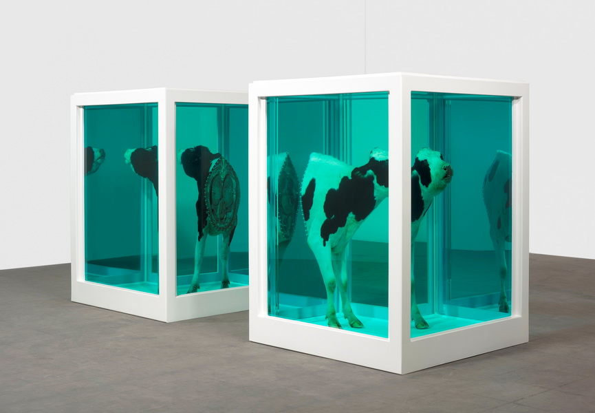 Damien Hirst can be considered as a conceptual artist