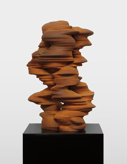 Tony Cragg-Different Points of View-2011