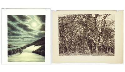 Patricia Tobacco Forrester-Sea Cypress; Winter Hill-