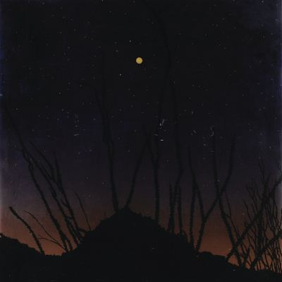 Fred Tomaselli-Moon Over Abique-1994