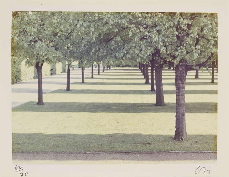 David Hockney-Herrenhauser Park, Hannover-1970
