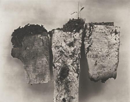 Irving Penn-Cigarette No. 85-1972