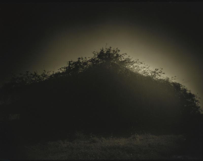 Sally Mann-Untitled (Deep South #39)-1998