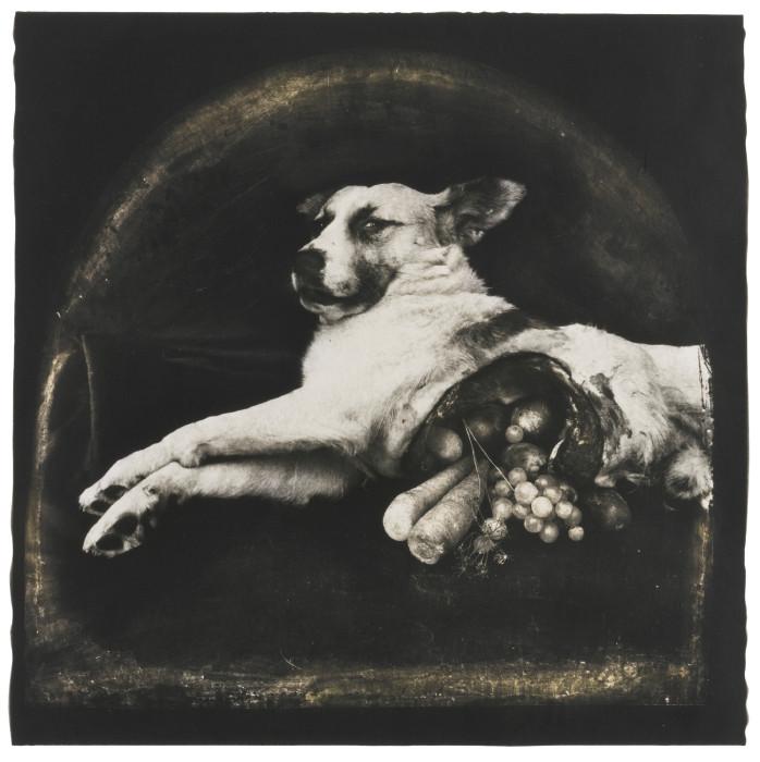 Joel-Peter Witkin-Cornucopian Dog-1984