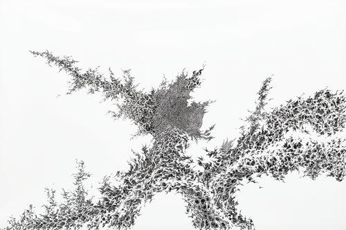 Tomoko Shioyasu-Sprout-2010