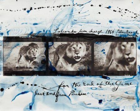 Peter Beard-Lolindo Lion Charge-1964