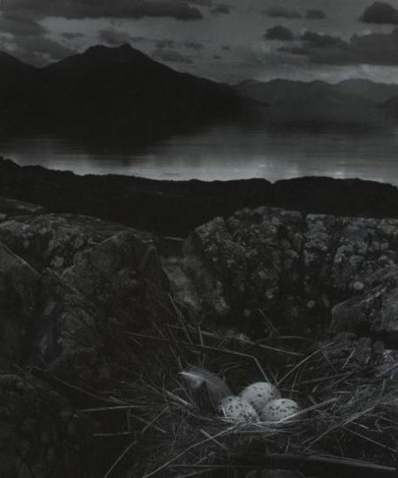 Bill Brandt-Gull's Nest, Late On Midsummer Night, Isle Of Skye-1947