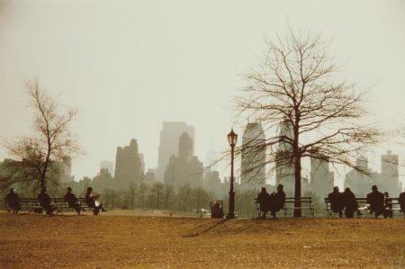 Ruth Orkin-Looking Across Sheep Meadow Toward Central Park South, New York City-1958