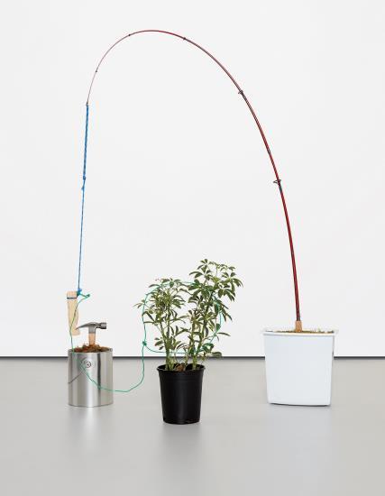Nick Darmstaedter-Vicki Vallencourt (Trap)-2013