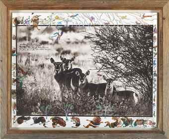 Peter Beard-Waterbuck Family-1968