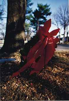William Eggleston-Untitled (Christmas wreath)-1970