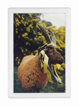 Matthew Barney-Cremaster 4: Loughton Ram-1994